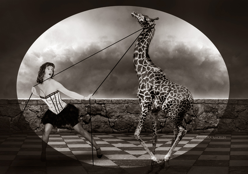 emma-giraffe-HW©