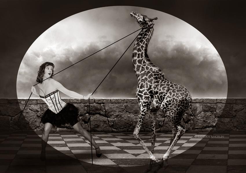 emma-giraffe
